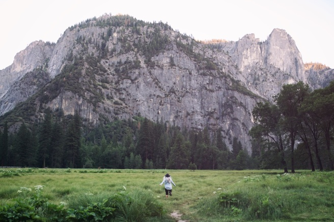 Joshua Tree, Laguna Beach, Sequoia and Yosemite California Roadtrip 2015 1271 - Version 2